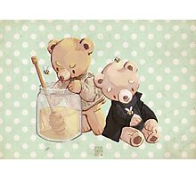 honey bees and holmes bears Photographic Print