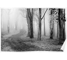 Forest Fog Poster