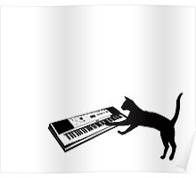 keyboard cat Poster