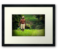 Balinese Rice Farmer Framed Print