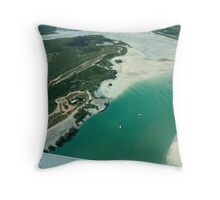 Aerial view of Willie Creek Throw Pillow