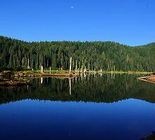 Goose Lake, Washington  by Don Siebel