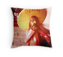 Beneva Throw Pillow