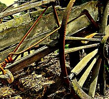 Gold Creek Wagon by Rinaldo Di Battista