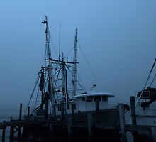 misty habor by kathy s gillentine