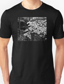 FIRST LEAVES OF SPRING Unisex T-Shirt