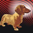 George dachshund by Matt Mawson