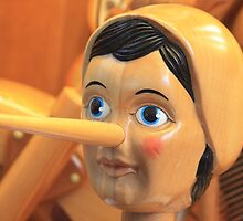 Pinocchio by Indrani Ghose