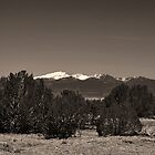ANCIENT SPIRIT MOUNTAINS by Thomas Barker-Detwiler