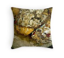 Rule by Secrecy Throw Pillow