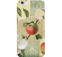 Apple Blossoms III iPhone Case/Skin