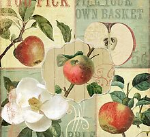 Apple Blossoms III by mindydidit