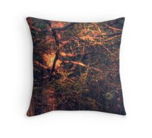 Highlights (version VI) Throw Pillow