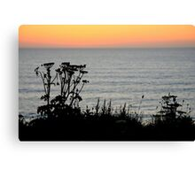 Sunset Silhouette - Lusty Glaze, Newquay, Cornwall Canvas Print