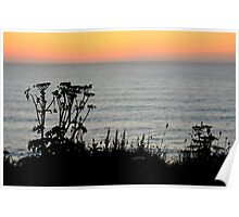 Sunset Silhouette - Lusty Glaze, Newquay, Cornwall Poster