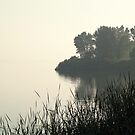 Morning Descends On The Lake by BarbL
