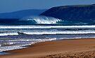 Surf's Up..... by Helen Vercoe