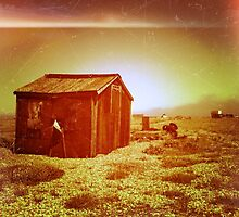 rusting shed by mooose