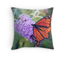 Feeding Monarch Throw Pillow