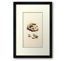 Coloured figures of English fungi or mushrooms James Sowerby 1809 0067 Framed Print