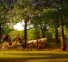 Horse and Buggy  by EllinRonee
