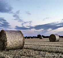 Bale time by Paul Hickson