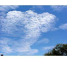 Elephant skyscape Photographic Print