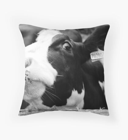 the cow is watching you Throw Pillow