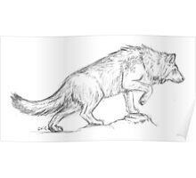 Wolf Sketch Poster