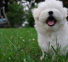 Happy Little Me by rduncan