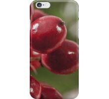 Wild Berry Cluster Macro iPhone Case/Skin