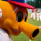 Goldie, the Mascot by Larry Trupp