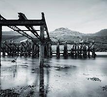 Arrocher Pier by Samantha  Nicol