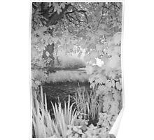 Secret Pool - Iinfrared Poster
