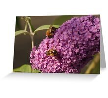 ~ Two Bee or Not Two Bee ~ Greeting Card