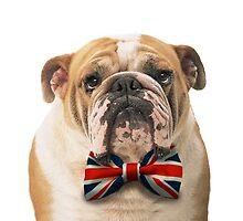 British Bulldog with a bowtie by ohsnap