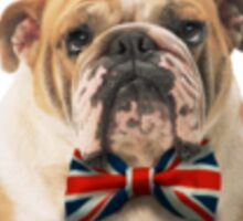 British Bulldog with a bowtie Sticker
