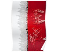 Ice crystals on a red band Poster