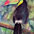 Keel-billed Toucan by arline wagner