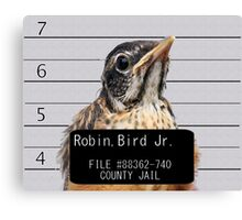 Jail Bird Canvas Print
