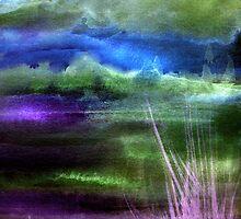 Morning Glory by Angela  Burman
