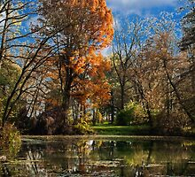 Pond, beautiful fall colors by Hujer