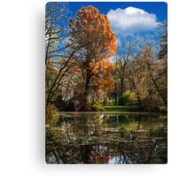 Pond, beautiful fall colors Canvas Print