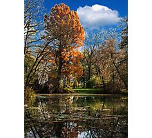 Pond, beautiful fall colors Photographic Print