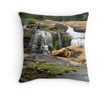 Waterfall in the Park Throw Pillow