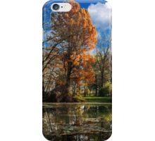 Pond, beautiful fall colors iPhone Case/Skin