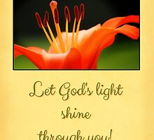 Let God's Light Shine - Card/Gift by Tracy Friesen