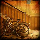 Bikes in a Parisian Foyer by dawne polis