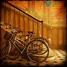 Bikes in a Parisian Foyer by dawne polis