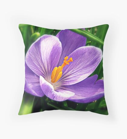 ~ Spring Colours ~ Throw Pillow